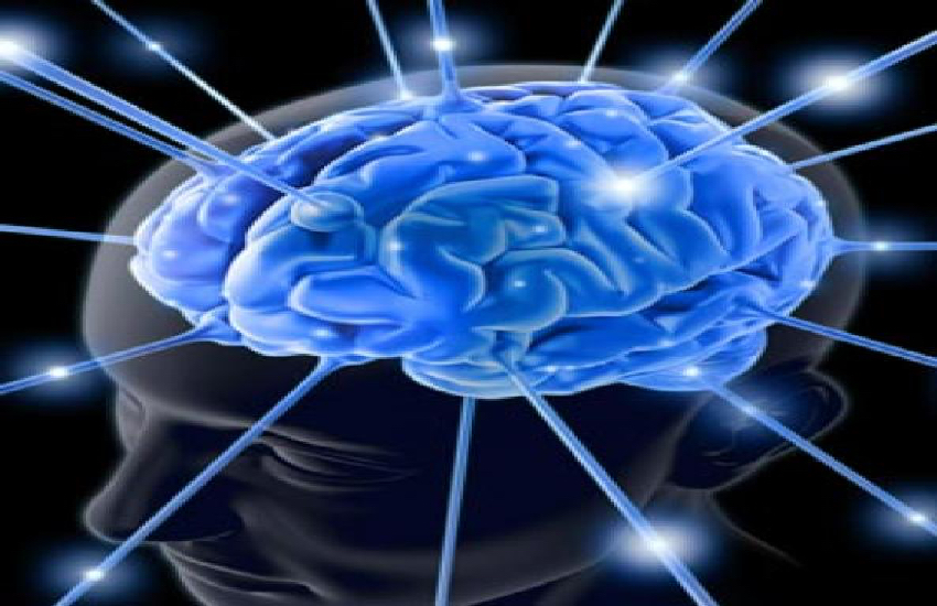 Rewire Your Brain For Success